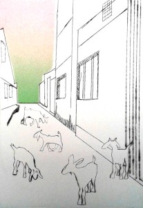 alley goats