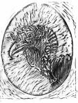 graphite-of-my-turkey-linocut
