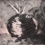 Turnip by Sue Daemon